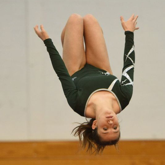 Inside the World of Leaps and Layouts: Gymnastics Flies in 2018