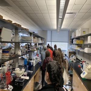 Anatomy and Physiology Class Visits WPU; photo credit: Grace Rose '19