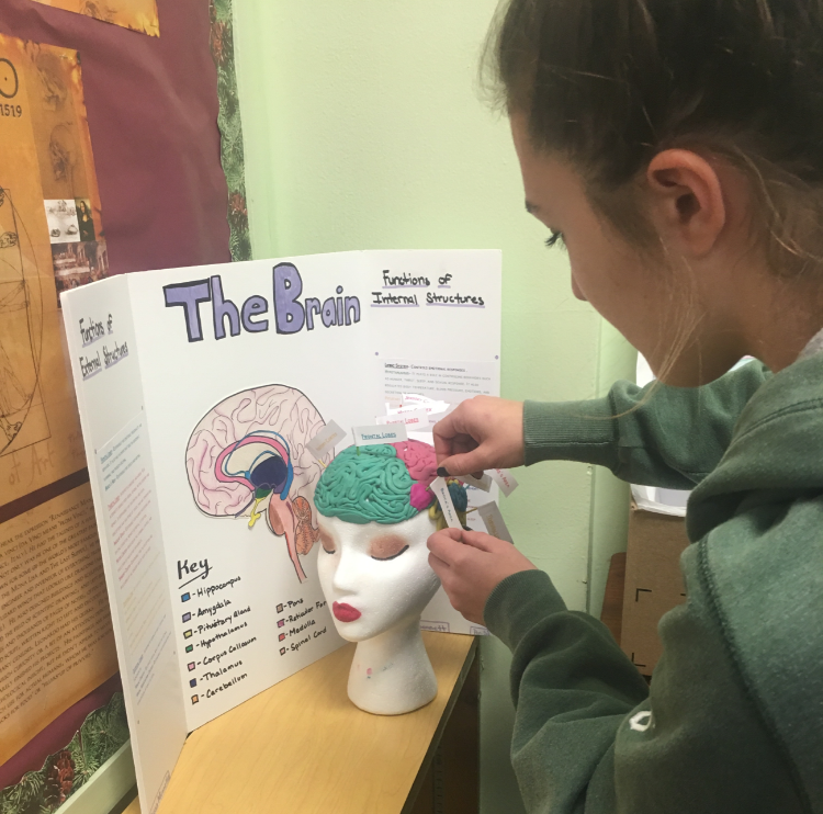 Brain Projec; photo credit: Alyssa Minella '19